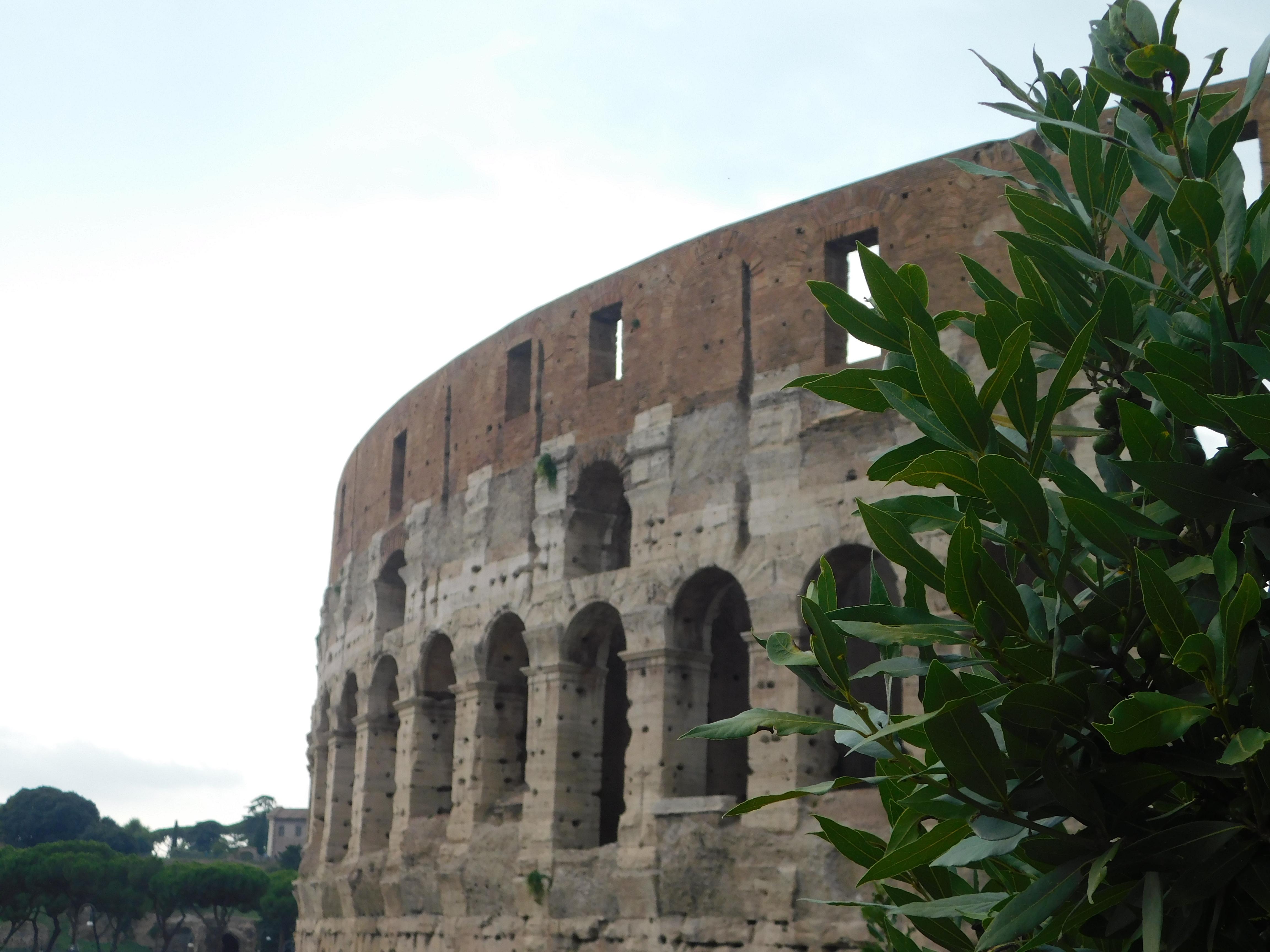 colosseum facade rome